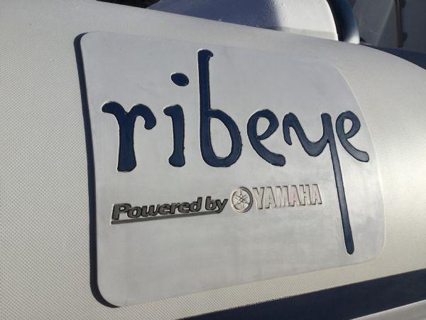 1439 - ribeye a600 rib with yamaha f100detl engine and trailer - ribeye logo_l