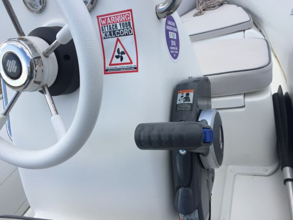 1436 - excel 470 rib with evinrude 60hp outboard engine and trailer - throttle_l