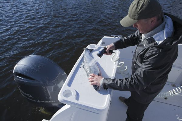 finnmaster pilot 7 with yamaha outboard engine - rear shower_l