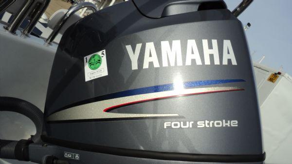 stock - 1355 - ribeye 600 rib with yamaha f100det engine - yamaha engine cowling_l