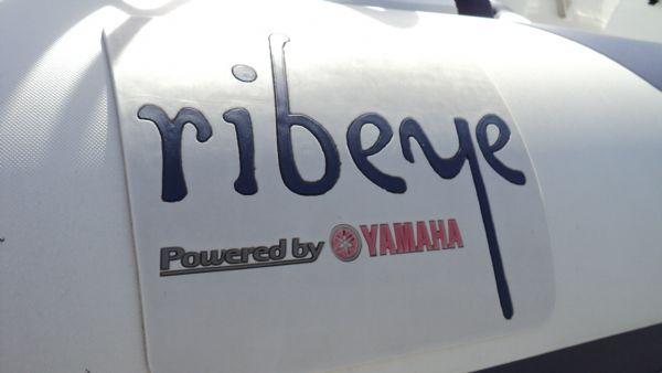 stock - 1347 - ribeye 600 rib with yamaha f115aet - ribeye emblem_l