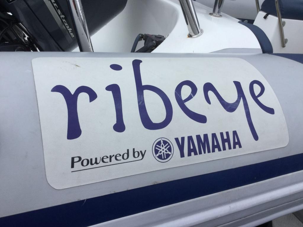 Brokerage - 1526 - Ribeye 785 S RIB with Yamaha F250 engine and trailer - Ribeye Logo