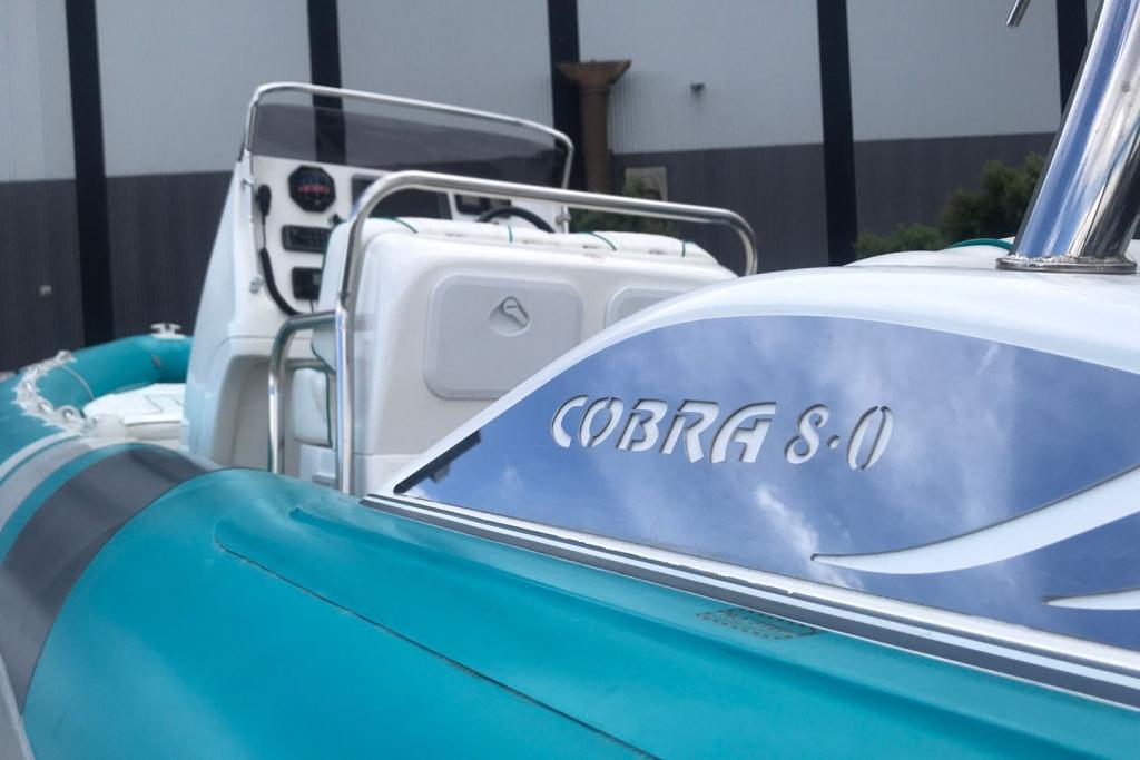 Cobra 8.jpg