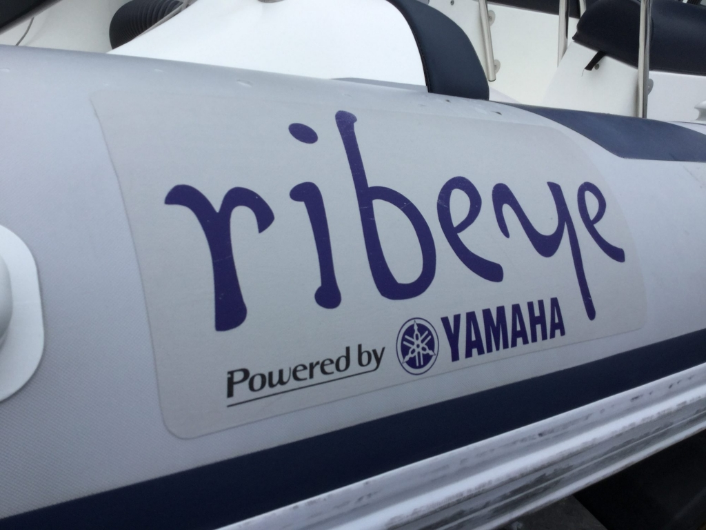 Brokerage - 1552 - Ribeye A600 with Yamaha F115BET engine and trailer - Ribeye logo